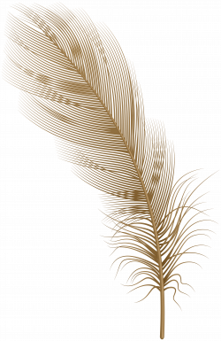 Feather Brown PNG Clip Art | Gallery Yopriceville - High ...