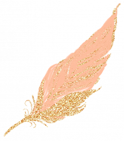 feathers feather pastel golden gold rosegold glitter...