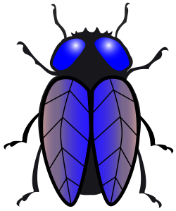 File:Housefly.svg - Wikimedia Commons