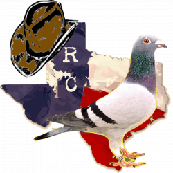 American Racing Pigeon Union: TEXAS EVENT KICKS OFF TODAY!