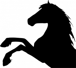 Horse Raising Feet Side View Silhouette Head Part Svg Png Icon Free ...