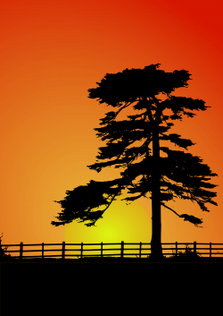 Clipart - Cedar Sunset
