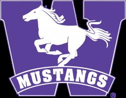 Stories — Western Varsity Fencing Team