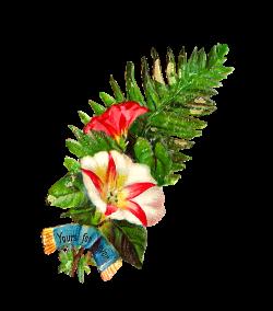Pin by Stacy Mishina on Декупаж | Decoupage: Victorian | Pinterest ...