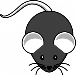 Field mouse clipart - Clipground