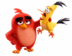 Red | Angry birds, Bird and Cartoon