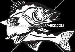 Walleye Clipart (60+)
