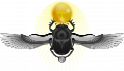 What Is The Meaning Of Scarab | Gem Rock Auctions