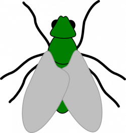 Greenfly Clip Art at Clker.com - vector clip art online, royalty ...