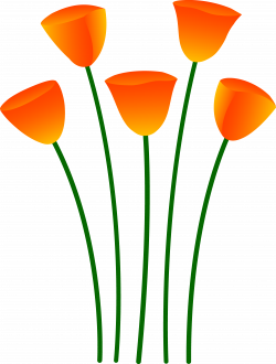 Orange Flower Clipart Apple Free collection | Download and share ...