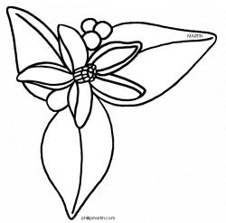 Florida%20clipart | orange tree blossom | Pinterest | Flower drawing ...