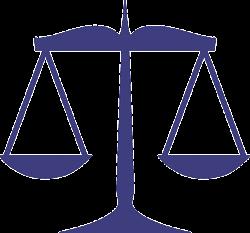 Florida Mold Laws / Florida Mold Attorneys / Mold Litigation / Miami ...