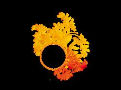 Floral-Design PNG | http://syedimranphotoshop.blogspot.com