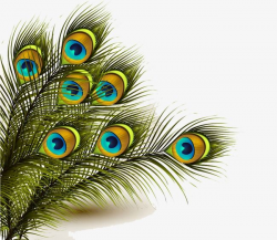 Peacock Feather, Peacock Clipart, Feathers Background PNG ...