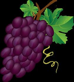 Grapes free to use clip art - Clipartix