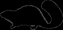Beaver Mammal Animal Shape Svg Png Icon Free Download (#73880 ...