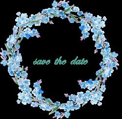 Flower Picture frame Clip art - Blue border 1221*1191 transprent Png ...