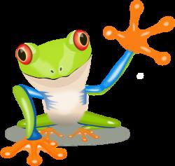 Image of Tree Frog Clipart #11371, Waving Frog Clip Art - Clipartoons