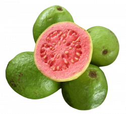 Guava Png & Guava Png Transparent Images #693 - PNGio