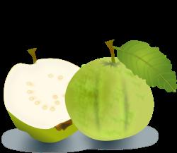 Clipart - Guava