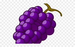 Grapes Clipart Autumn Fruit - Png Download (#2935564 ...