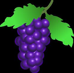 Clipart - grapes