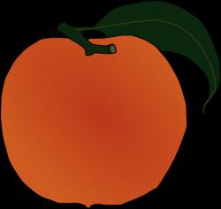Peach Clip Art at Clker.com - vector clip art online, royalty free ...