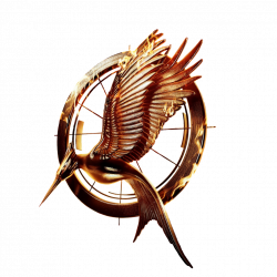 Catching Fire movie Logo Transparent (With Ring) by allheartsgoboom ...