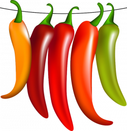 hot and spices chilies | vegetables png | Pinterest | Clip art ...