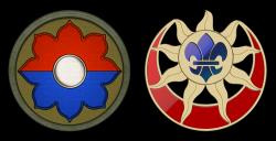 Military Insignia 3D : 2011
