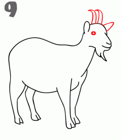 How To Draw a Goat - Step-by-Step