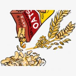 Food Free On Dumielauxepices Net - Oat Grains Clip Art ...