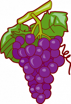 Grapes Clipart | Clipart Panda - Free Clipart Images