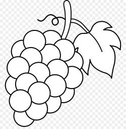 Common Grape Vine Wine Juice Clip art - Grape Leaf Cliparts png ...