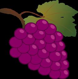 Grape Clip Art at Clker.com - vector clip art online, royalty free ...