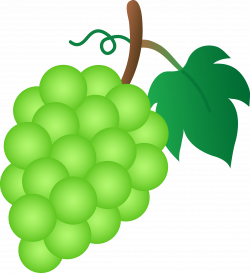 28+ Collection of Green Grape Clipart | High quality, free cliparts ...