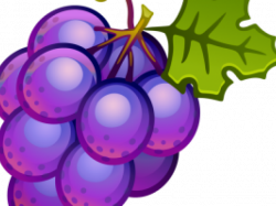 19 Grape clipart HUGE FREEBIE! Download for PowerPoint presentations ...