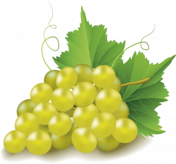 Grape Clip art - grape 869*813 transprent Png Free Download ...