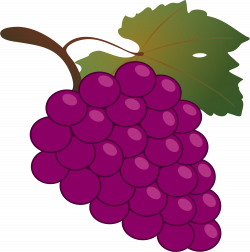 Grapes Clipart to printable – Free Clipart Images