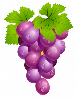 Grapes with Leaves PNG Clipart Picture | (clip art) EVERYTHING FOR A ...