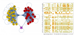 Left: Modularity based graph community plot on the Markov chain ...