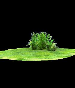 wonderful grass land accent by madetobeunique on DeviantArt