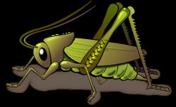 Detect Termite | Crickets