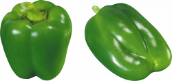Download PEPPER Free PNG transparent image and clipart