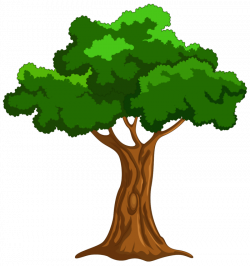 Mango Tree Clipart at GetDrawings.com   Free for personal use Mango ...