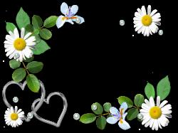 romance flourish frame (6).png | Flourish and Album