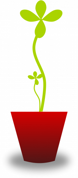Tender Plant Icons PNG - Free PNG and Icons Downloads