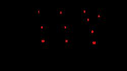 Primal cut - Wikiwand