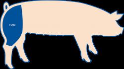 Seaboard Foods Ham
