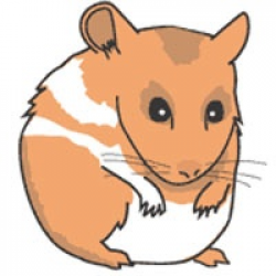 Hamster Clipart | Clipart Panda - Free Clipart Images